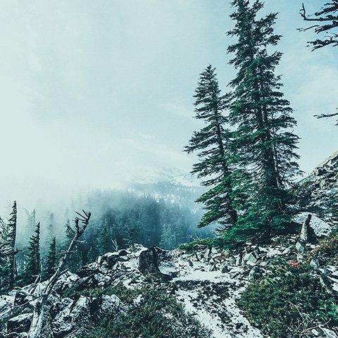 Адыгея зимой мини