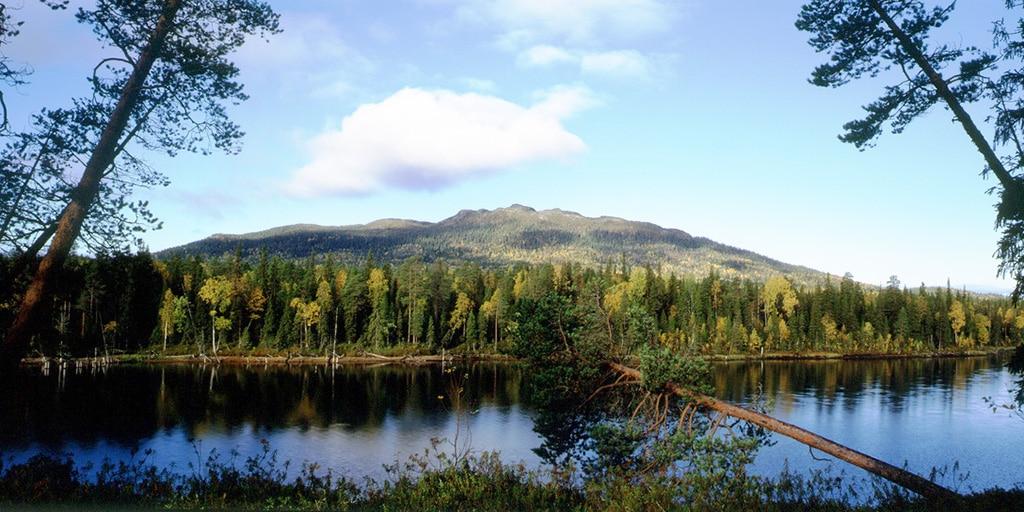 Национальный парк Карелии