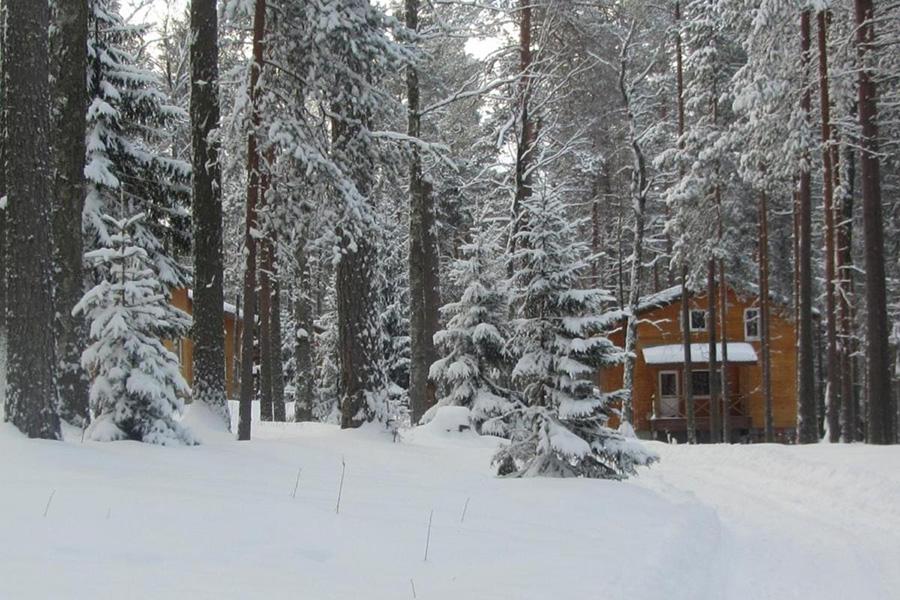База Шишки — основное место проживание в наших путешествиях по Карелии зимой 2021.