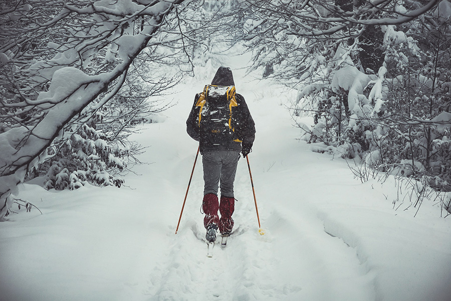 """Самая доступная и качественная лыжная трасса — """"Фонтаны"""" — находится в Петрозаводске"""