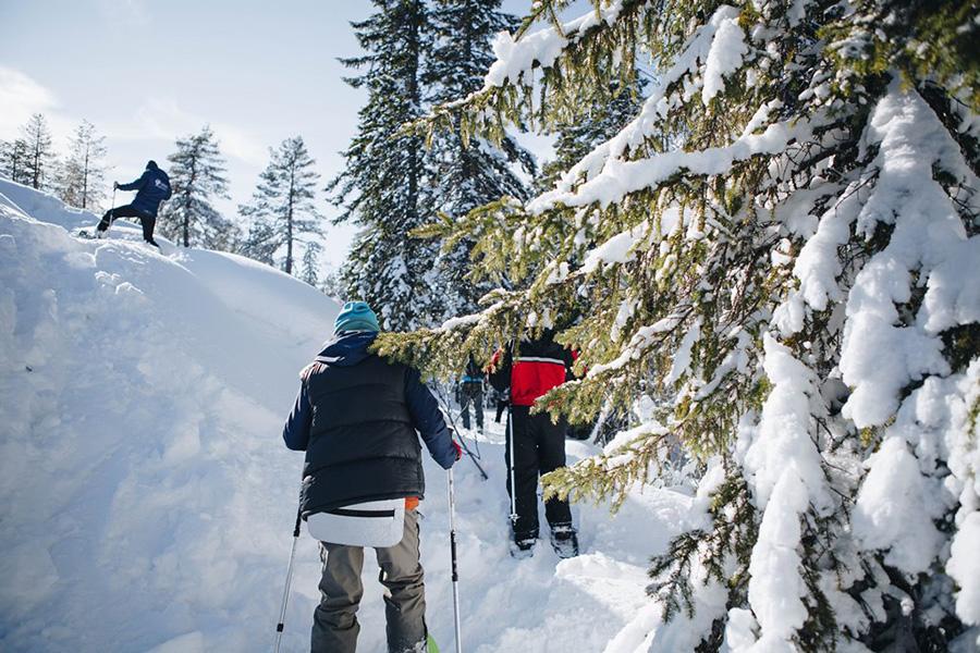 Снегоступы — молодое, но очень активное и любопытное развлечение зимой.