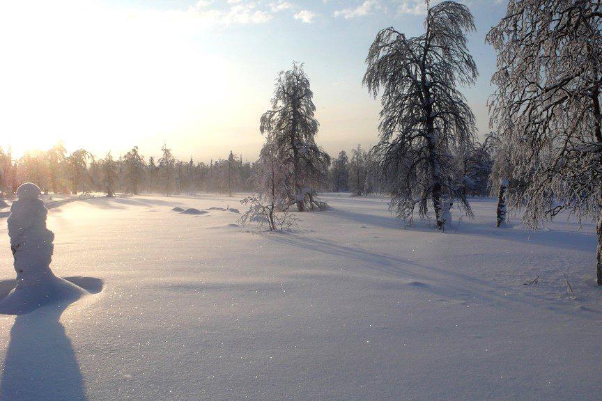 Зимой в Карелии особенно прекрасна — настоящая северная сказка