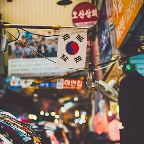 Погружение в Южную Корею, путешествие с Adventurity