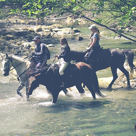 Приключение на лошадях в Сочи с Адвентурити