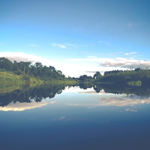 Сплав по реке Медведица