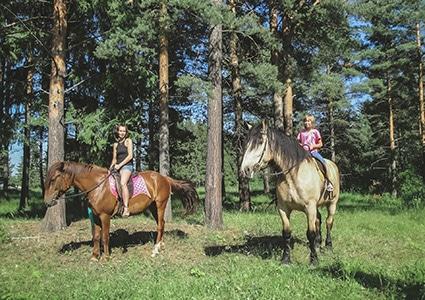 Прогулка на лошадях в Карелии