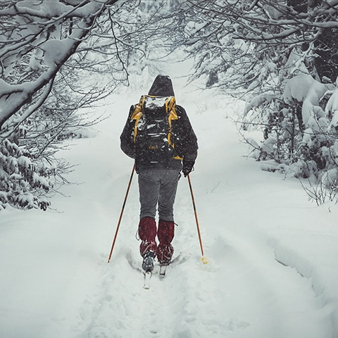 Выходные на лыжах с Adventurity