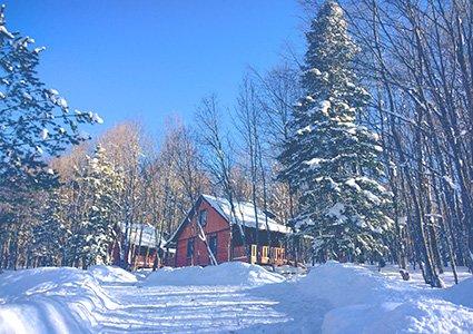 База Зеленый Гай зимой