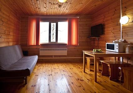 Гостиная с мини-кухней и диваном